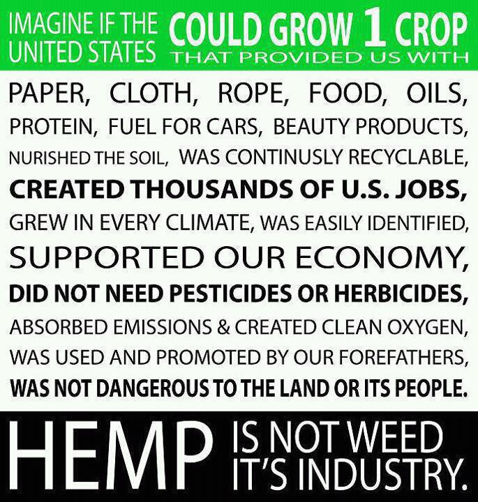 marijuana - hemp is industry