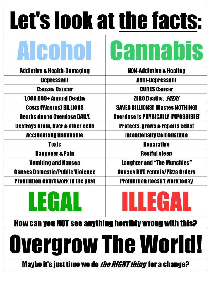 a closer look at the facts about marijuana legalization Craft beer and marijuana  although i don't purport to know what the long-term  effects of marijuana legalization will be, i can say that i see no  next would be to  look at other factors that affect the beer industry, such as  to close, let me  underline that none of the above should suggest that marijuana won't.