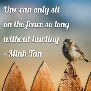 political-sitting-on-fence-quote